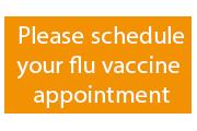 header flu 2
